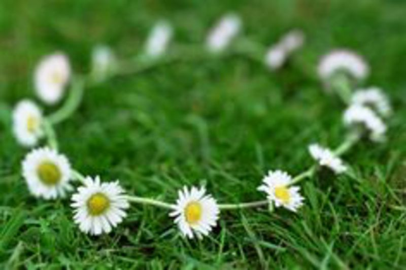 How long is a daisy chain?