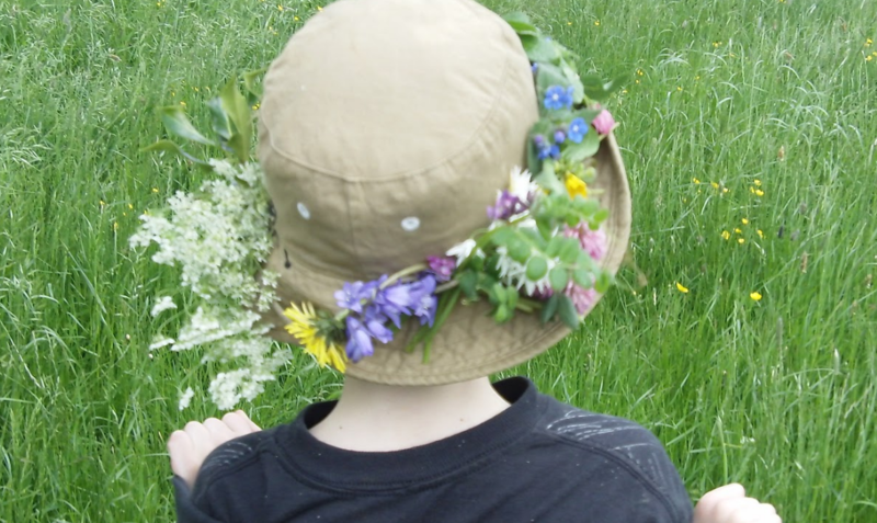 How diverse is the local plant life?  Make a biodiversity crown (or hat!)